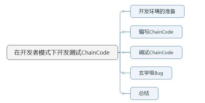 07-在开发者模式下调试chaincode